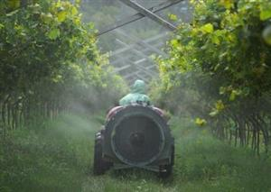 Reducing pesticides and boosting harvests